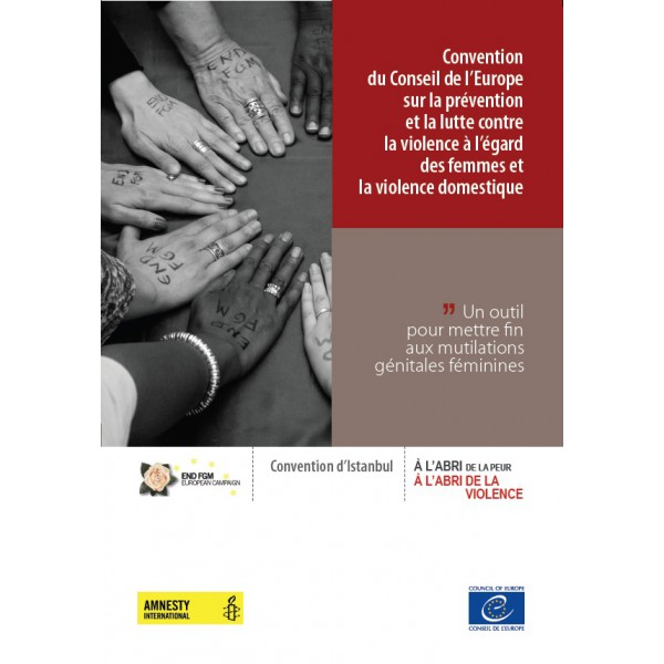 convention du conseil de l u2019europe sur la pr u00e9vention et la lutte contre la violence  u00e0 l u2019 u00e9gard des