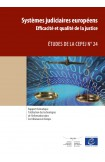 L'utilisation des technologies de l'information dans les tribunaux en Europe  (Etudes de la CEPEJ n° 24)