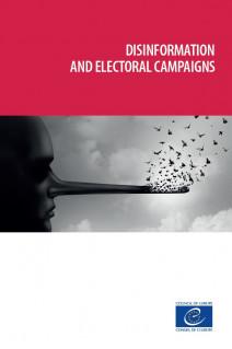 Disinformation and electoral campaigns