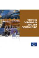 PDF - Treoir don...